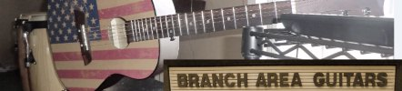 Branch Area Guitars Logo